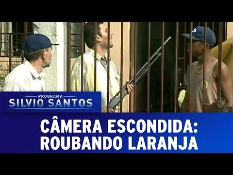 Câmera Escondida (03/07/16) - Roubando Laranja