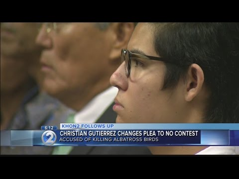 Man accused of killing Laysan albatross birds changes plea to no contest