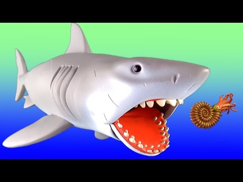 Learn Marine Reptiles names - Learning Sea Animal for children, toddlers - Jaws Megalodon Mosasaurus