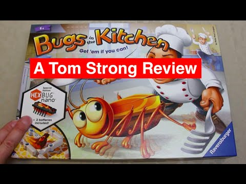 Bugs In The Kitchen Review Fast Paced Fun Incorporating A Hexbug Nano By Ravensburger