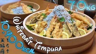 大食い和歌山編→釜揚げしらす天丼7kgをなじみで食べた。eating14lb whitebait tempura Bowl thumbnail