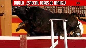 Imagen del video: TOROS: Espectaculares toros de Arriazu acercándose a la grada en Tudela