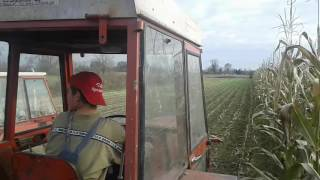 Imt 565 (s44 motor) i Mengele 210 siliranje postrnog kukuruza Brezovica 2016