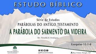"""Série Parábolas do Antigo Testamento: """"A parábola do sarmento da videira"""" (Ezequiel 15.1-8)"""