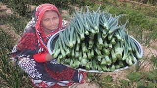 Farm Fresh Onion Leaves Recipe Green Sabzi Onion Leaves Harvesting With Puti Fish Curry Village Food