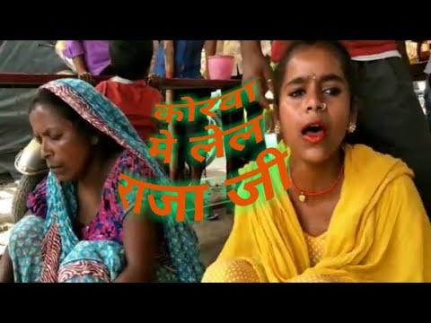 #🙏कोरवा मे लेल राजा जी##Korwa Mein Lela Rajaji Superhit Jhareliya //--