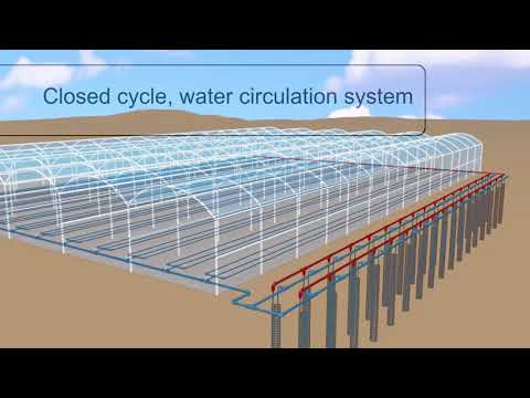 Heating and cooling plants ROOTS zone using underground heat exchange