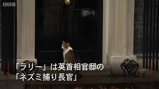 英首相官邸と猫と警官 「最も英国的な光景」