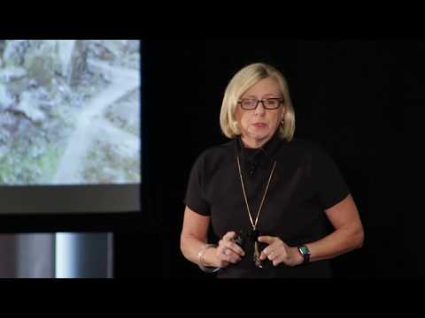 Immigrants, Curiosity and American Strength | Nancy Soderberg | TEDxUniversityofRochester