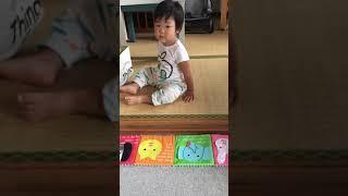 子供英会話バイリンガルボーイAlan(1歳児)動物の名前、色、アルファベット言えるかな?Learning animals colors and the alphabets