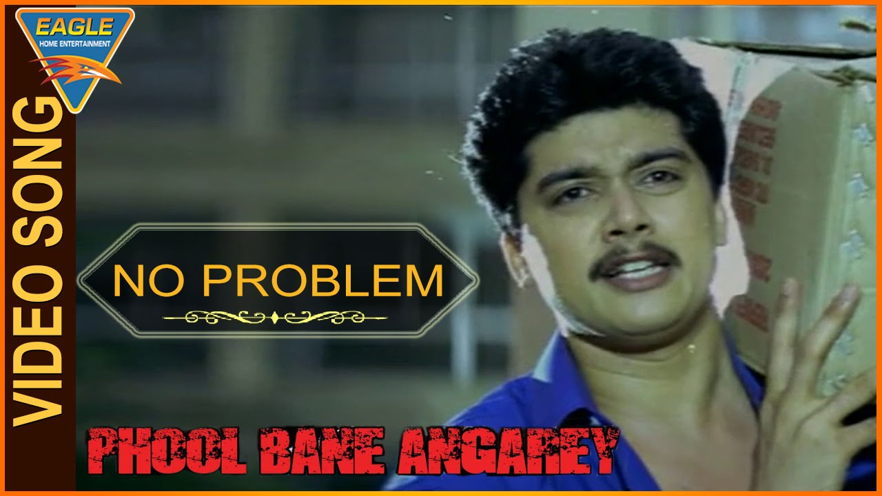 no problem hindi movie video