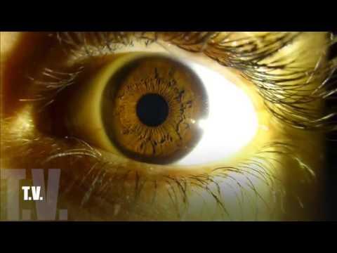 El Show del Chilakil - Emilio Rivera parte 2