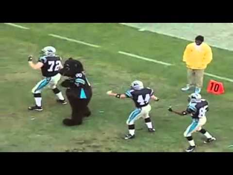 Sir Purr - Cupid Shuffle with Players