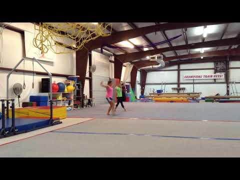 Gymnastics Floor Routine Choreography: Animals
