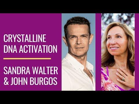 #DNA Activation, 2020