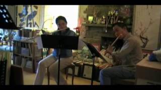 Mercadante, Saverio - Drei Duos - Duo III Allegro maestoso