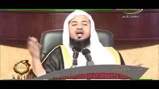الشيخ محمد بن علي الشنقيطي (جبريل عليه السلام)