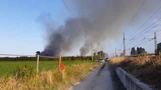 Incendio Abruzzo  Pineto - Scerne di Pineto zona Mercatone Uno