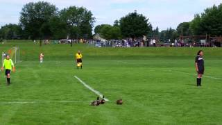 サッカーの試合中にマガモが乱入、審判とった行動は…やっぱりアレか!(動画)