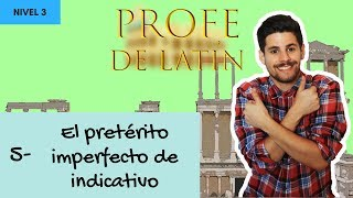 5- El pretérito imperfecto de indicativo (Nivel 3)