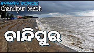 ଚାନ୍ଦିପୁର ବେଳାଭୂମି (CHANDIPUR SEA BEACH) || #Go_Uttam