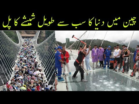 Sheeshe ka pul china | Duniya ka sab se bara sheeshe ka pul | World longest glass bridge