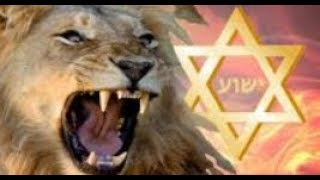 NFL 2018 | CAT Riddles, David Katz shooting in Jacksonville +Lion of Judah & 26th of Elul