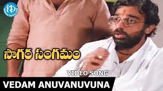 Vedam Anuvanuvuna Song - Sagara Sangamam Movie Songs - Kamal Haasan - Jayaprada - S P Sailaja