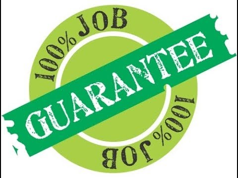 100% Job Guarantee | Fake Promises | Hindi