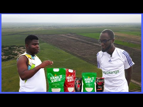 How A Young Ghanaian Left America & Now Owns 10,000 Acres Rice Farm