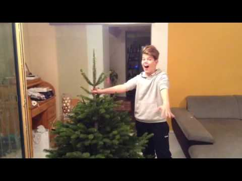 Weihnachtsbaum fenster werfen