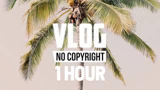 [1 Hour] - Vlad Gluschenko - Palm Trees (Vlog No Copyright Music)