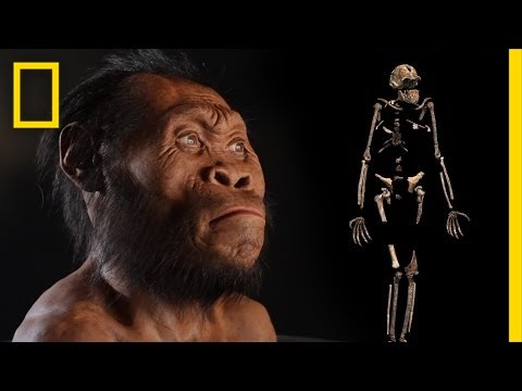 New Human Ancestor Discovered: Homo naledi (EXCLUSIVE VIDEO)