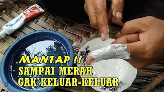 Gambar cover Pepsodent Untuk Tahan Lama Alami Permanen