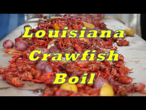 Leap Day 2020 Crawfish Boil Louisiana Style - Tôm Hùm Đất