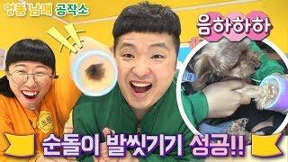 [판다다]엉뚱 남매 공작소 - 강아지 발세척기