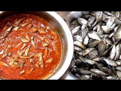 How to make Small Fish Curry – South INDIAN special  Fish Curry recipe -Sardine Fish gravy