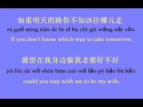 Would you be my wife ? 做我老婆好不好 ? (PIN YIN & ENG TRANSLATED LYRICS)