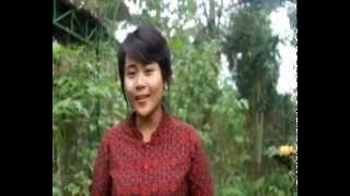 Pang Lipang Dang (STKIP PGRI BL 2013)--A. Effendi Sanusi