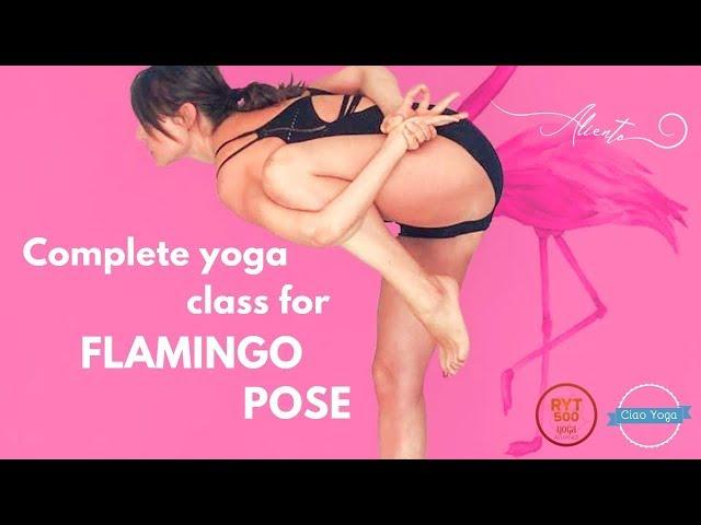 Pratica yoga completa per la posizione del Fenicottero! (60 minuti)