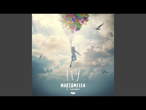 Fly (ft. Leah Culver)