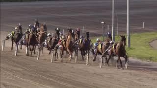 Vidéo de la course PMU PRIX HARAS DE GINAI