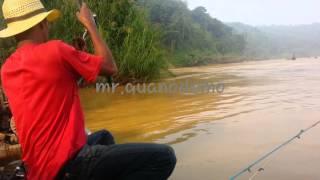 Pok Ju - Mancing Ikan Baung Sungai Kuala Gris Kelantan