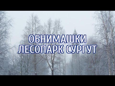 🔴 В Сургуте горожане взяли пример с Екатеринбурга, обняв лесопарк