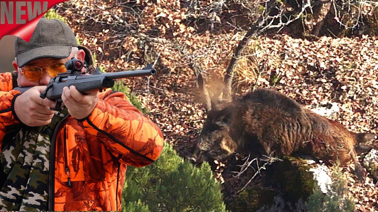ATA TEAM Sekiören Domuz Avı Wildboar Hunting