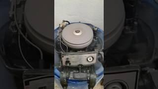 moteur johnson 9,5