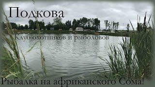 Рыбалка на Сома В клубе охотников и рыболовов Подкова Платник Химки Московская область