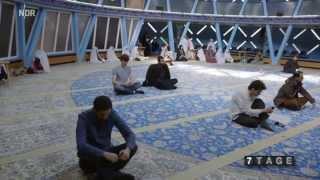 7 Tage unter Muslimen