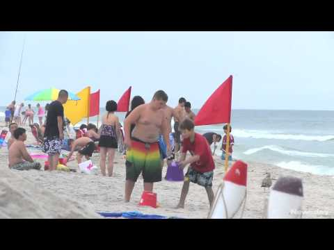 Shark scare at Robert Moses State Park