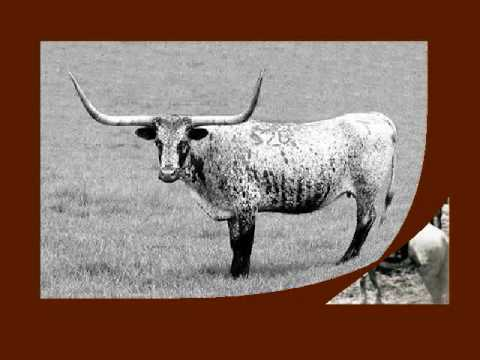 John Simpson Chisum Cattle King of the Pecos